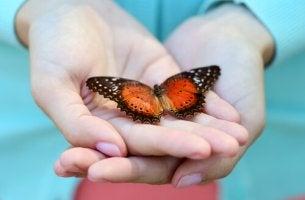 MAnos con una mariposa simbolizando la sencillez