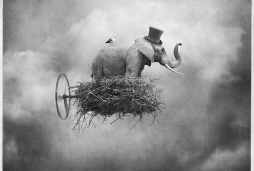 elefante suspendido en nube