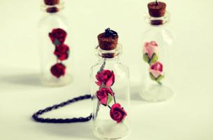 frascos amor propio