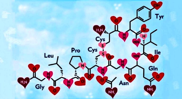 ¿Sabes cómo actúa la hormona de los abrazos?