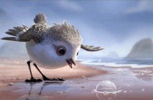Piper con pompa en la arena