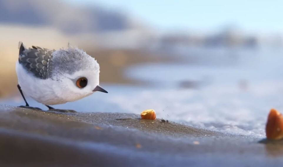 Piper corto de pixar