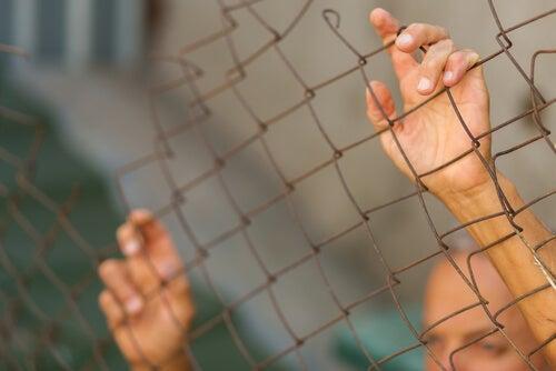 Convertir al otro en animal: la deshumanización