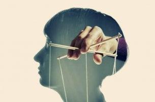 Perfil de una cabeza manipulada