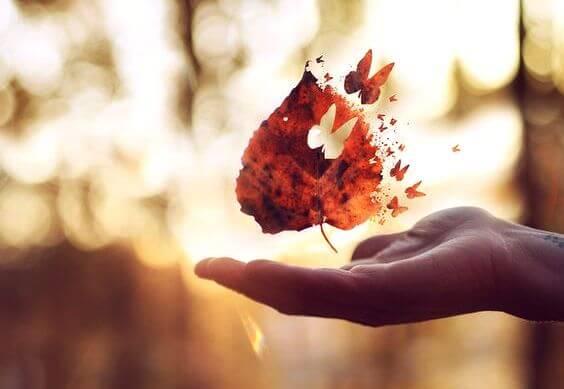 hoja fragmentada en mariposa