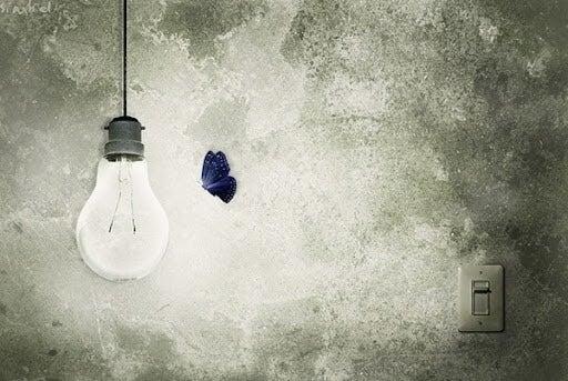 butterfly flying towards light bulb