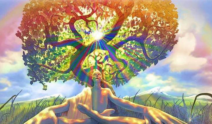 árbol toma de conciencia