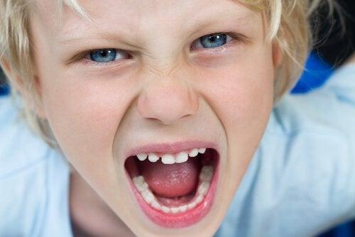 Niño gritando enfurecido y sin límites