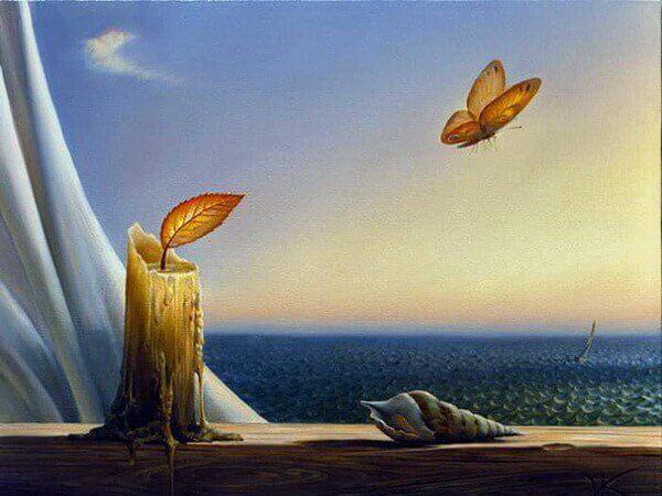 Vela y mariposa con curiosidad