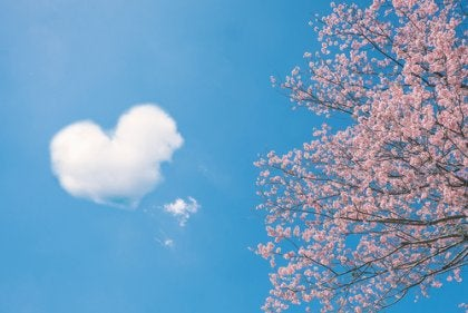 5 proverbios chinos sobre el amor