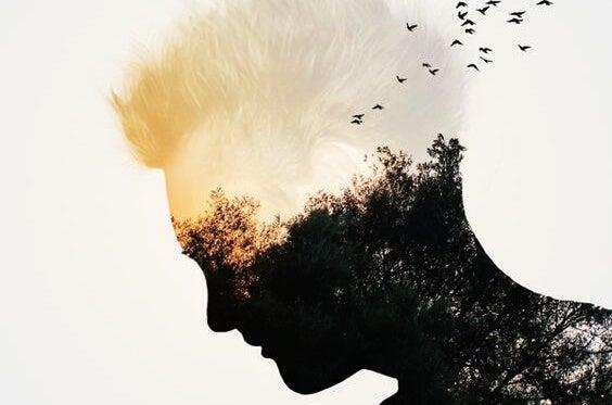 Hombre con pájaros