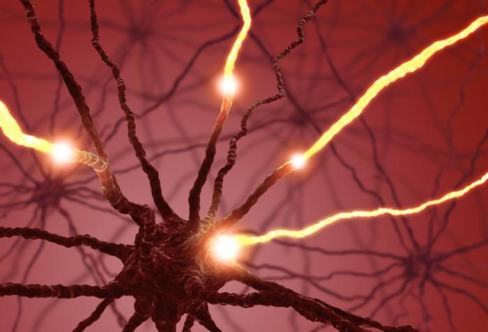 ¿Sabes qué es la serotonina y qué efectos tiene en tu cuerpo?