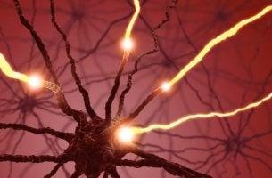 Nervio en acción por efecto de la serotonina