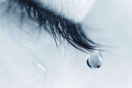 Ojo cerrado con una lágrima
