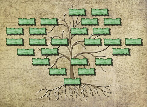 Dibujo de un árbol genealógico
