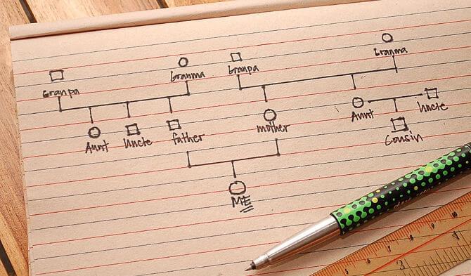 Cómo elaborar un genograma paso a paso