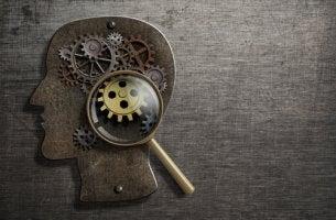 Cabeza de una persona con una lupa sobre los mecanismos de su mente