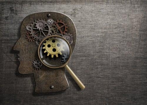 ¿Qué es la metacognición?
