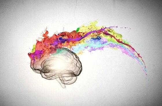 Cerebro con colores simulando la inteligencia emocional