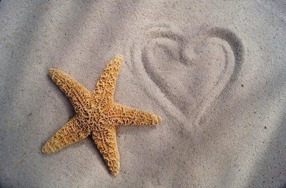 estrella de mar en la arena junto a un corazón