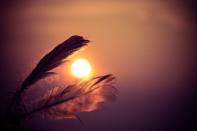 plumas rodeando el sol del atardecer representando el relato africano