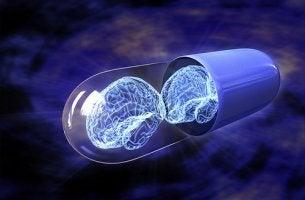 cápsula con cerebro representando los fármacos nootrópicos
