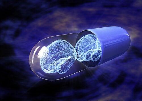 ¿Qué son los nootrópicos y cómo potencian tu inteligencia?