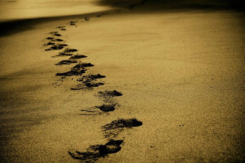 Caminar por la vida