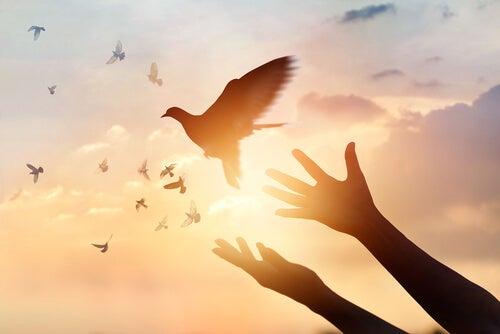 Manos soltando un pájaro representando las frases de Fritz Perls