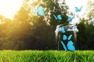 Bote de cristal con mariposas azules