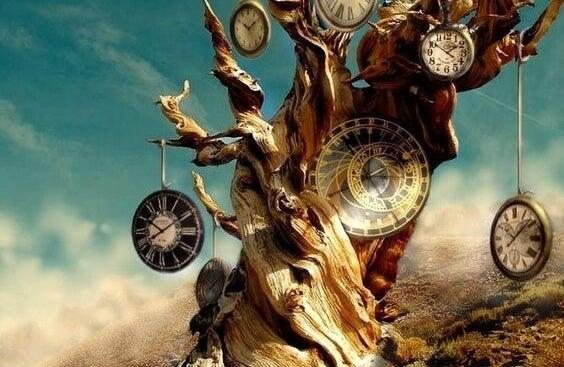 Tronco con relojes