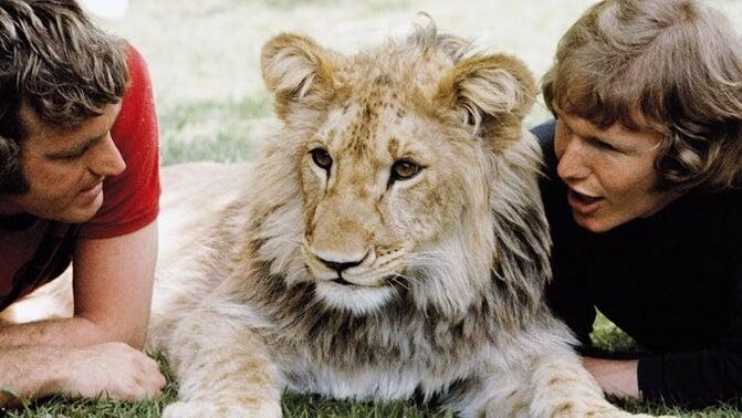 Christian el leon con sus cuidadores