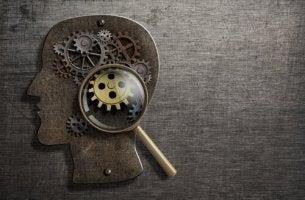 Cabeza de una persona con mecanismo como ejemplo de procesos psicológicos básicos