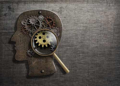 ¿Conoces nuestros 8 procesos psicológicos básicos?