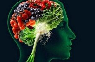 cerebro con alimentos para la memoria