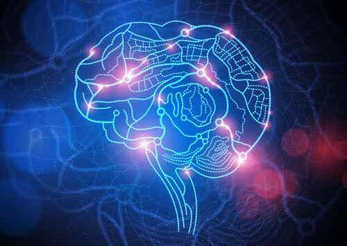 7 documentales imprescindibles sobre neurociencias y neuropsicología
