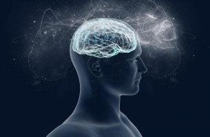 cerebro rodeado de energía a causa del magnesio