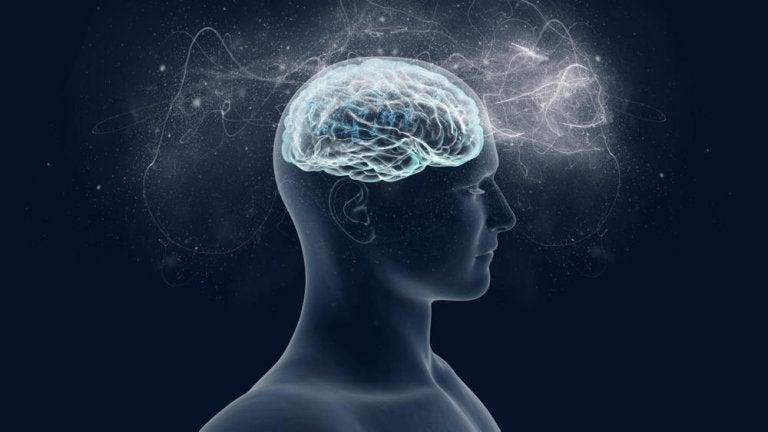 Magnesio: el aliado de nuestro cerebro y del bienestar psicológico