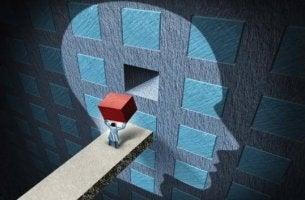 hombre introduciendo cubo en cabeza representando la psicología aplicada