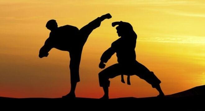 Personas practicando artes marciales