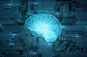 Cerebro como un ordenador para representar el conexionismo