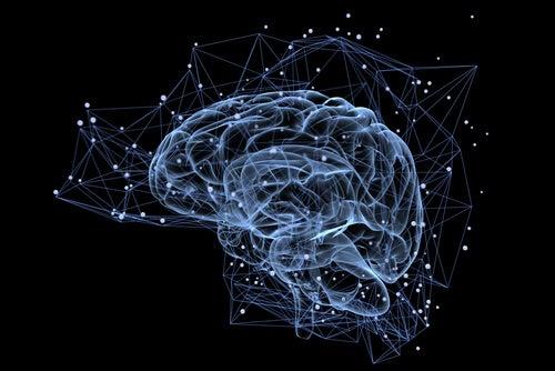 Cerebro iluminado sobre fondo oscuro