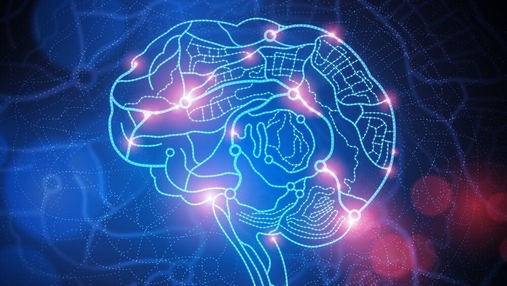 cerebro iluminado por el efecto de la humillación