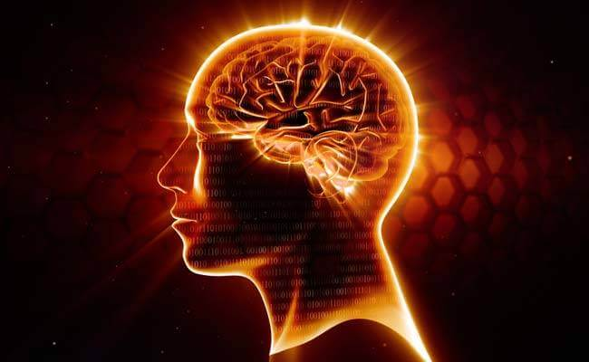 Omega-3, el mejor neuroprotector