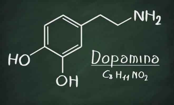¿Qué es la dopamina y qué funciones tiene?