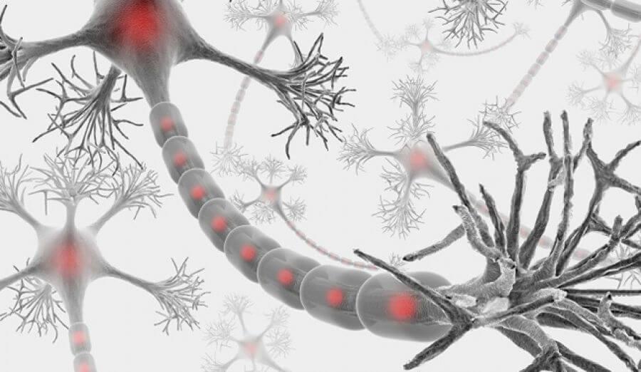 Célula nerviosa simbolizando lo que es vivir con esclerosis múltiple