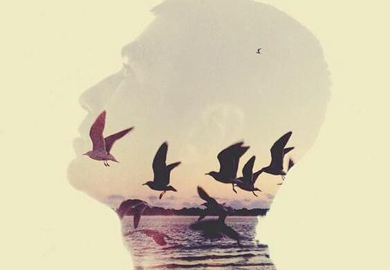 hombre con pájaros en el interior