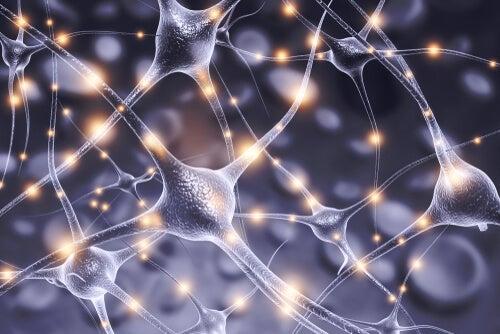Grupo de neuronas