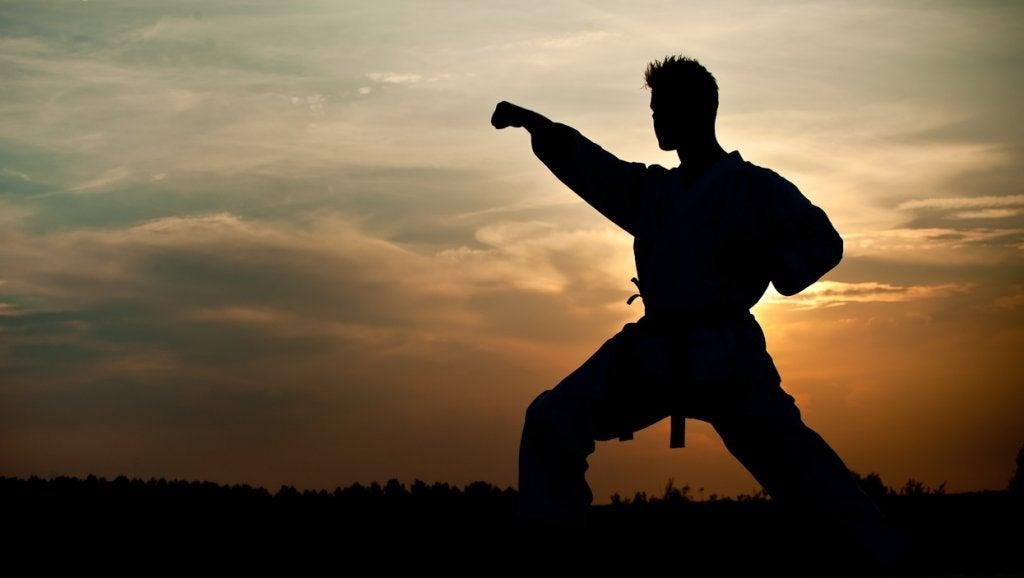 hombre practicando artes marciales