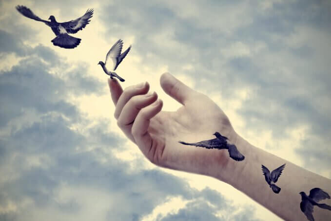Pájaros echando a volar